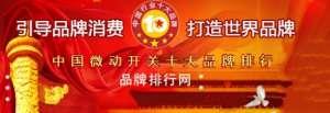 """""""2018年度中国微动开关十大品牌总评榜""""荣耀揭晓滕州"""